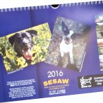 A few calendars still available....