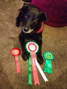 Maisy 'Champion'!
